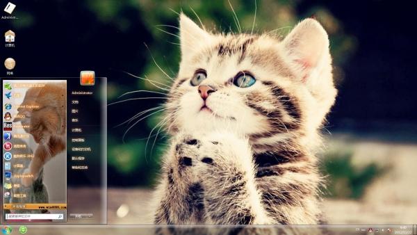 当你烦躁无比的生活看着这样的一只猫你会发现你心情舒畅了许多.